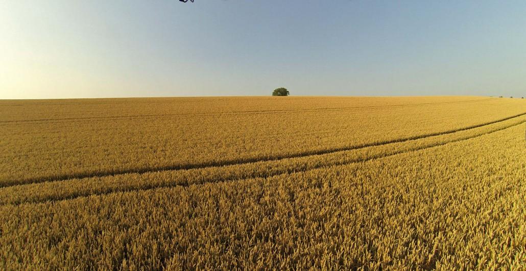 Luftbild Kraichgau Landschaft